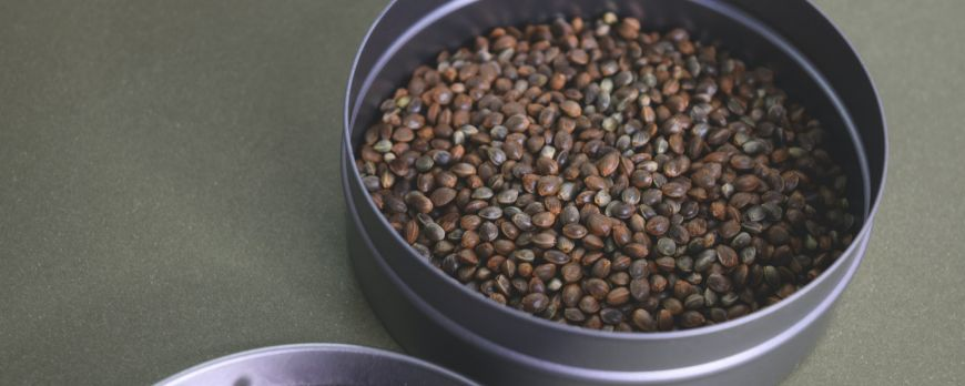 Health benefits from the consumption of cannabis seeds